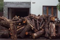 Dřevo z lesa