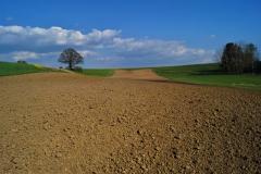Poslední hektar