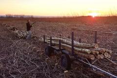 A zase to dřevo