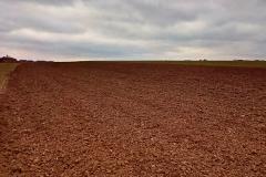 Nekonečné pole