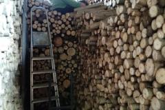 Táta rovná dřevo