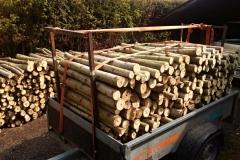 Dřevo do krbu až do domu