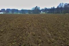 Příprava půdy se nepovedla