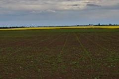 Pouhých pět hektarů