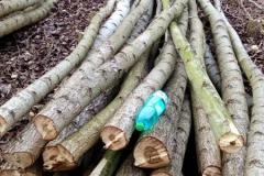 Dva metry dřeva 2