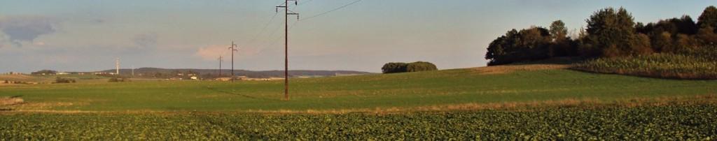Podmítnuté pole bylo už v záři krásně zelené. Foceno 20.9.2012