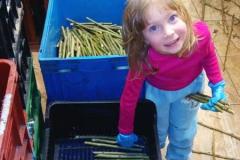 Dětská práce opět a zase