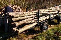 Kubík dřeva