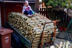 Paní dřeva