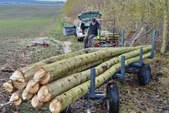 Asi půl tuny dřeva