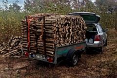 Přes dva metry dřeva